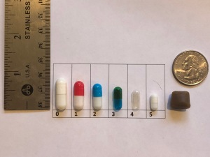 Different Capsule Sizes
